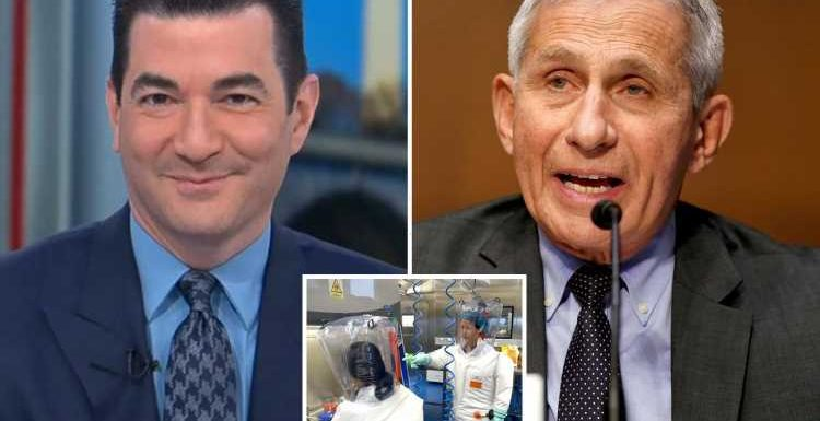 Dr Fauci said Covid could have escaped from Wuhan lab LAST spring, ex FDA chief Scott Gottlieb reveals