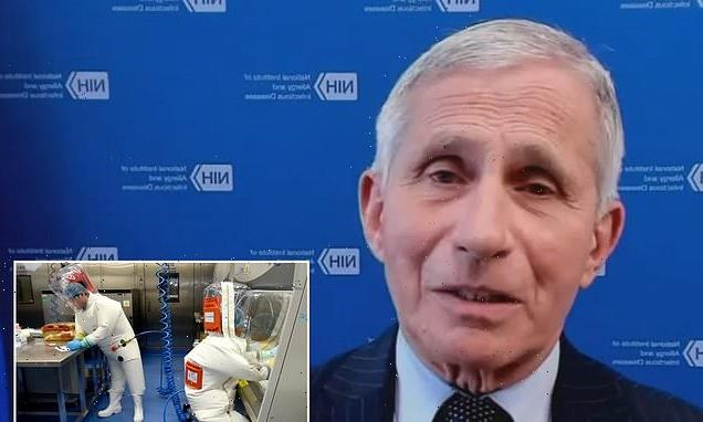 Fauci doubles down on COVID origin – its likely from animal to a human
