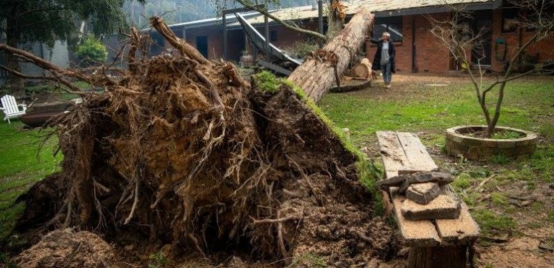 Melburnians warned against travel to flood and storm battered areas