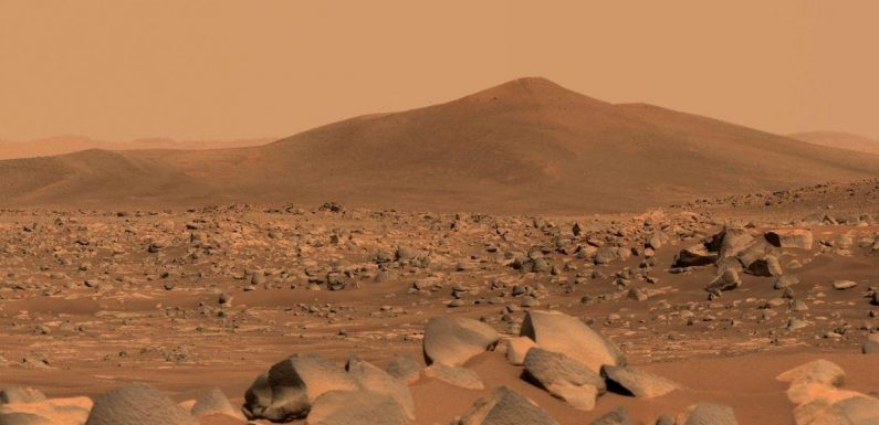 NASA discovers vital salts on Mars in latest sign of life on the red planet