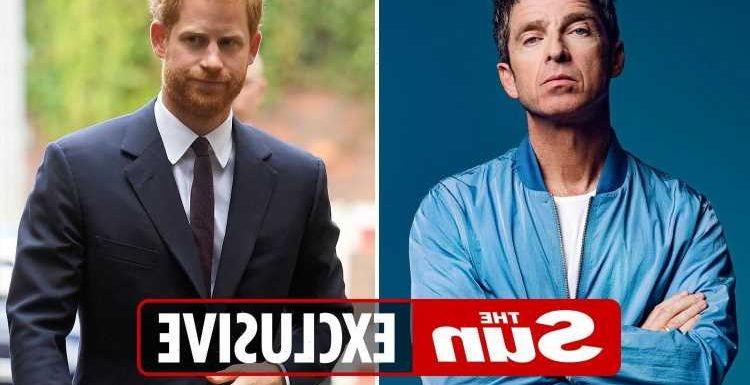 Noel Gallagher calls Prince Harry a 'f***ing woke snowflake' and says he 'needs to shut up' like his brother Liam