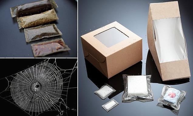 'Vegan spider silk' provides alternative to single-use plastics