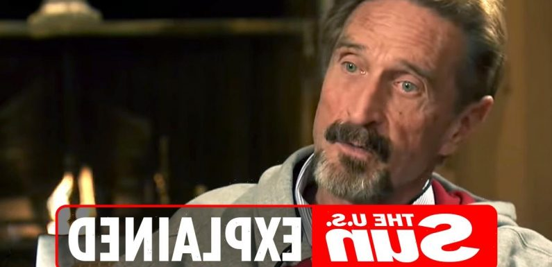 What is the John McAfee documentary about and where can you watch it?