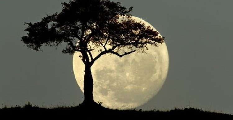 What time is the Full Moon tonight? Don't miss the last Supermoon of the year