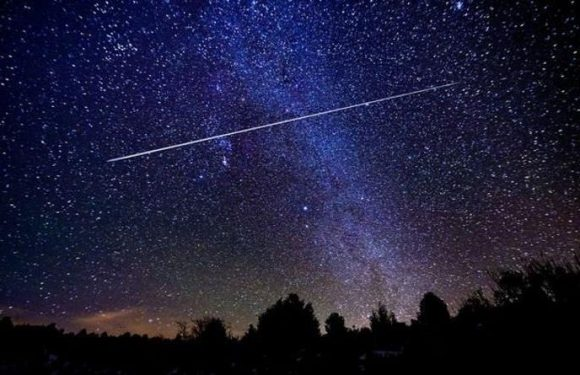 Meteor shower tonight: 'Exciting fireballs' to light up the night on Delta Aquariids peak