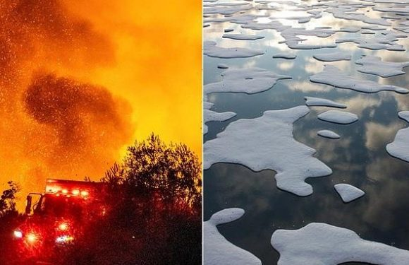 Scientists fear climate change may have reached the point of no return