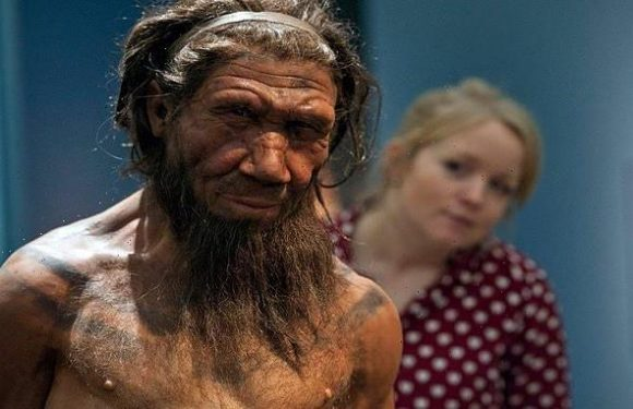 Sex with humans 'caused anaemia that helped to kill off Neanderthals'