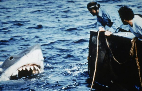 Steven Spielberg Was Too Traumatized to Work on 'Jaws' Sequels