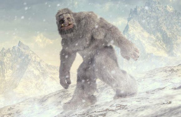 Terrified couple claimed white-haired 'Bigfoot' tried to break into their car
