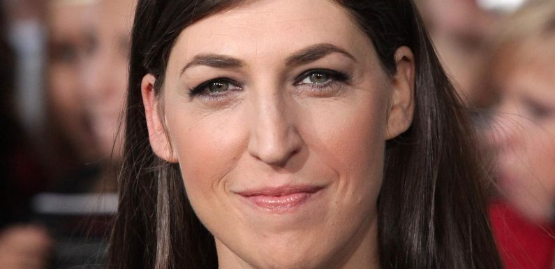 The Mayim Bialik Big Bang Theory Easter Egg You Totally Missed