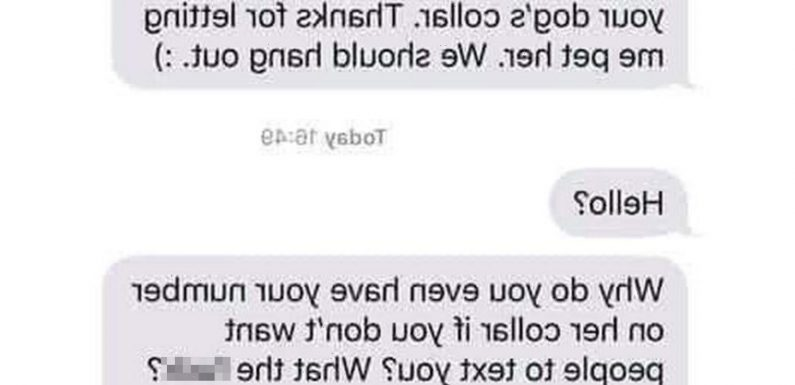 Woman horrified when stranger texts her after getting her number from her dog's collar & is baffled when she ignored him