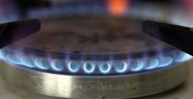 EU braced for 'very tight winter' as soaring gas prices threaten 'poverty crisis'