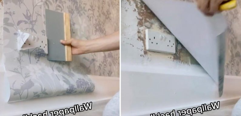 DIY expert reveals wallpaper hack that will save you tons of time and effort when installing it