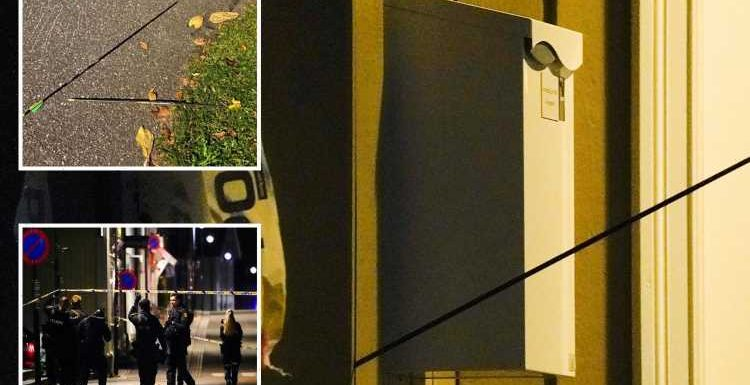 Norway bow and arrow attack – Witnesses reveal woman's 'death cries' after man opens fire killing 5 & injuring 2